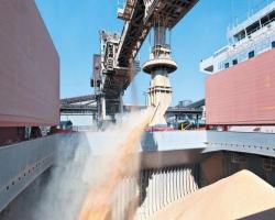 Granéis sólidos lideram movimentação no Porto de Santos