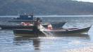 Minist�rio lan�a edital para Terminais Pesqueiros P�blicos